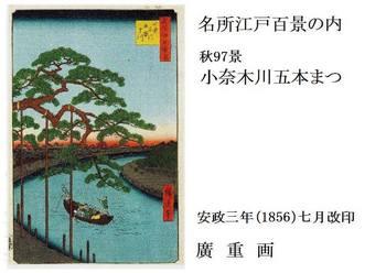 #00小奈木川五本まつ(秋97景).jpg