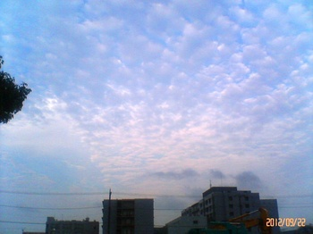 #02菅野から東方向P027.jpg