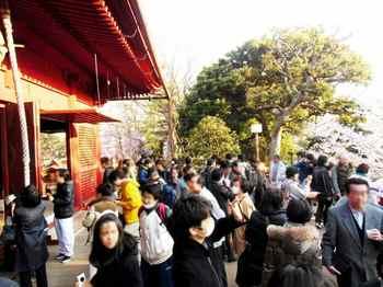 #06上野清水堂⑤663.jpg