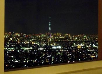 #07会場からの夜景G3150 90.jpg