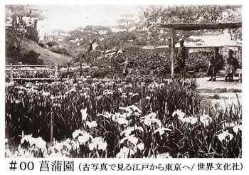 #10菖蒲園・古写真.jpg