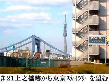 #21上之橋跡から東京スカイツリーを望む.jpg