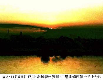 #A11月5日江戸川・北越紀州製紙北端から.jpg