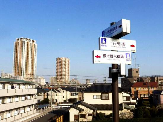 #C11江戸川・河津桜160219_154640C.jpg