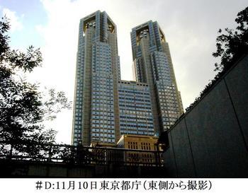 #D11月10日都庁(東側から撮影).jpg