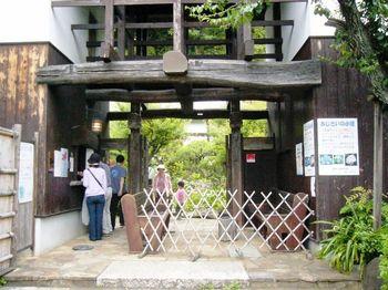 #鎌倉アジサイ02.jpg