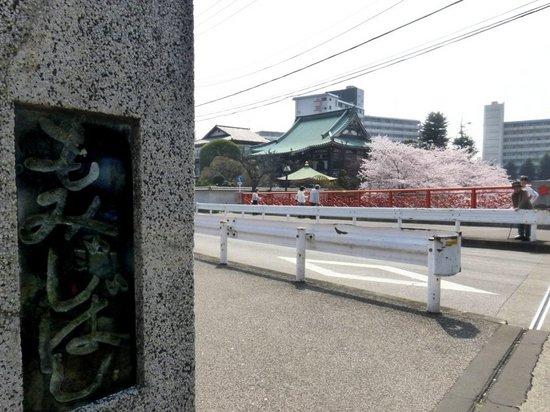 $11青丸④P323紅葉橋から金剛寺を望む.jpg