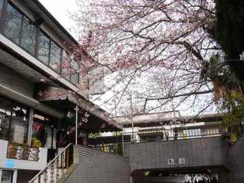 #03鎌倉駅連絡通路213.jpg