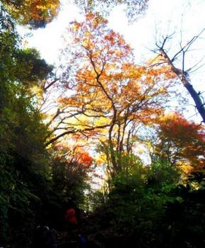 #06源氏山公園G3025pano.jpg