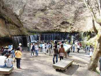#06白糸の滝全景825.jpg