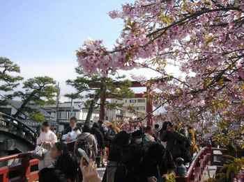 #06鶴岡八幡宮223.jpg