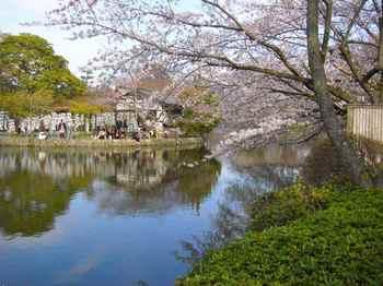 #07鶴岡八幡宮251.jpg