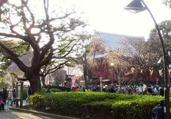 #09上野清水堂(南東から)677.jpg