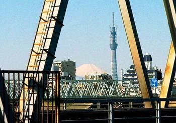 #10京成鉄橋越し.jpg