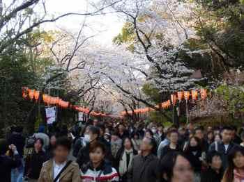 #11上野公園内駅への道700.jpg