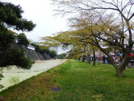 #12P1020553西桔橋付近から蓮池濠を望む.jpg