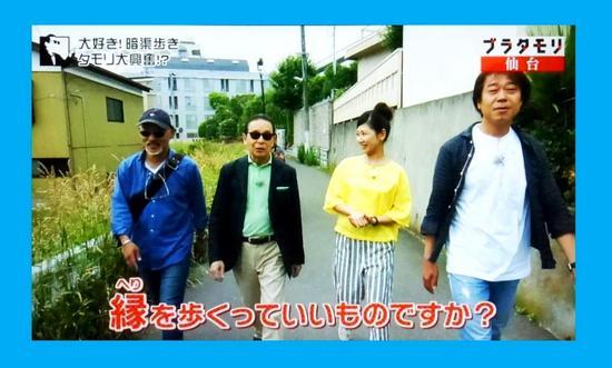 #27四谷用水・八幡4-11-21付近P0174B.jpg