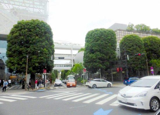 $11鎌倉会二子玉川28F.jpg