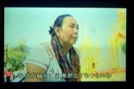 $ホンダ歩行アシスト007.jpg
