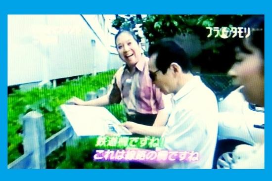 &09鉄道柵P895C.jpg